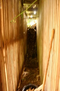 Tunnel 1 (427x640)